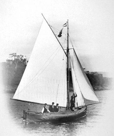 <em>Terra Linna</em> history